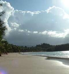 Playa La Ballenas (Las Terrenas)