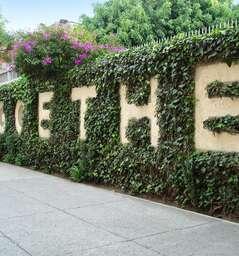 Goethe-Institut Mexico City