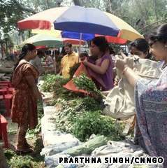The Organic Farmers Market