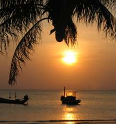 Thai Sunset, website