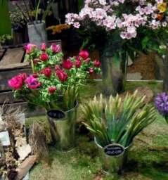 Blumenmehr, flowers
