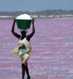 Lac Rose - Pink Lake