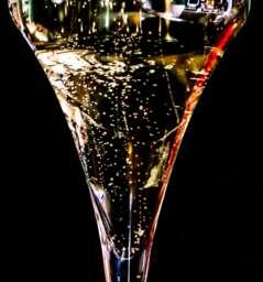 VINODOM Wine Shop & Bar  *BARBARESCO*