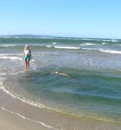 Bribie Island Surf Side Beach - Worrim