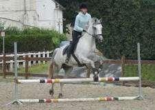 """Centre Equestre """"La Gaillemarde"""""""