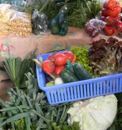 Feria La Carolina / Organic Food in Quito